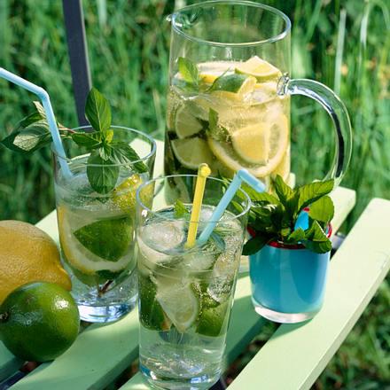 Limetten-Drink Rezept