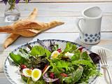 Mangold-Wildkräuter-Salat mit Orangen-Senfdressing Rezept