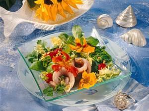 Matjesfilets mit Sommersalat und exotischem Dressing Rezept