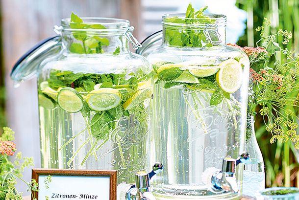 Minz-Zitrus-Limonade Rezept