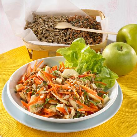 Möhren-Apfel-Salat mit Sonnenblumenkernen und Linsenkeimlingen Rezept