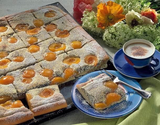 Mohn-Schmand-Kuchen mit Aprikosen (Diabetiker) Rezept
