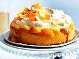 Orangen-Pudding-Torte Rezept
