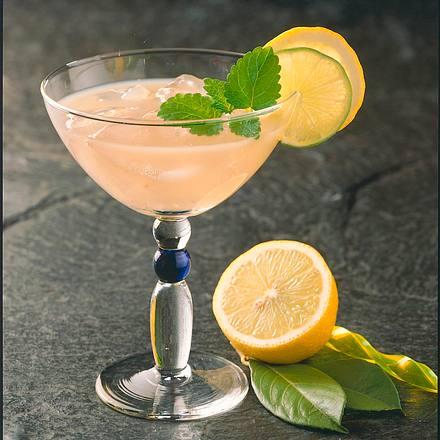 Pastis-Martini Rezept
