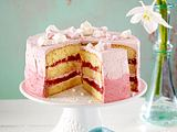 Rhabarber-Ombre-Torte Rezept
