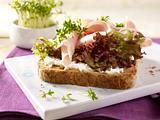 Schinken-Toast mit Kresse Rezept