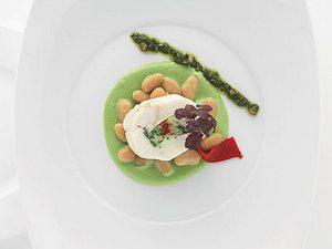 Seeteufel-Tajine mit Frijoles blancs'o'vert (grün-weiße Bohnen) (Alain Ducasse) Rezept