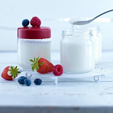 Selbstgemachter Joghurt Rezept