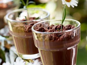 Süße Topfpflanzen aus Schokopudding Rezept