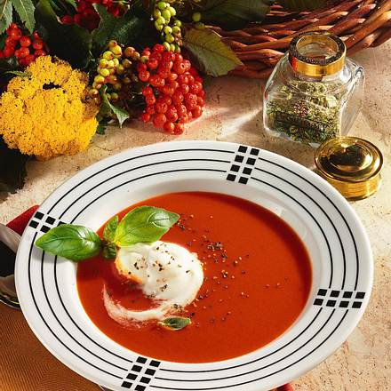 Tomatensuppe mit Ginsahne Rezept