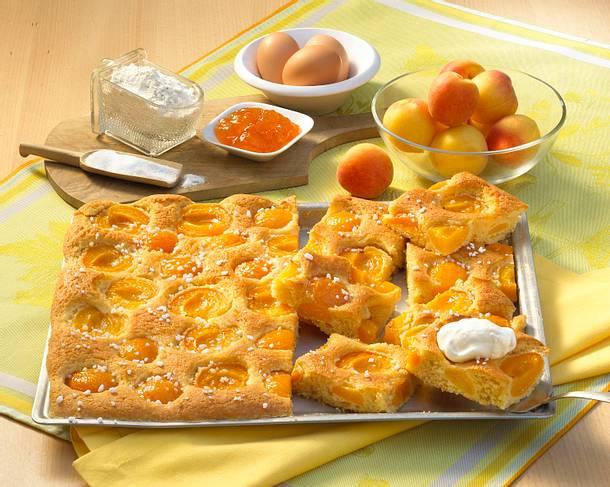 Versunkener Aprikosenkuchen vom Blech Rezept