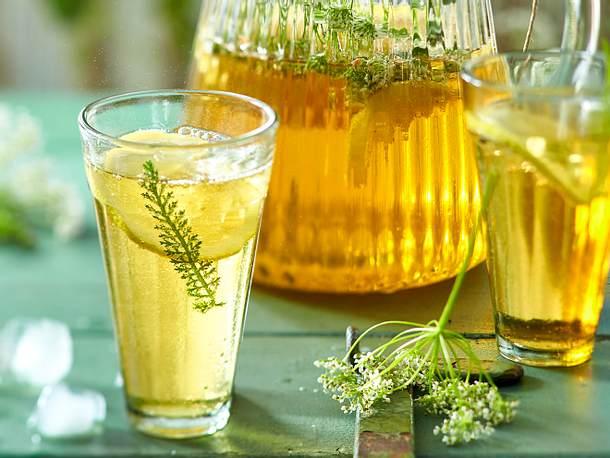 Wildkräuter-Limonade Rezept