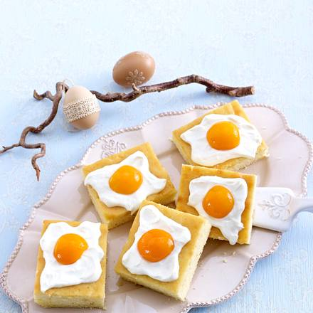 Zitronen-Aprikosen-Kuchen vom Blech Rezept