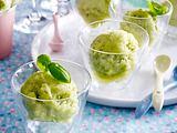 Zitronen-Basilikum-Sorbet Rezept